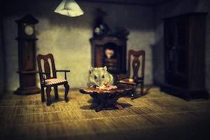 Impresión Artística/Póster: Vaclav Kindl Jarmil The Hamster - Impresión de Alta Calidad, Foto, Póster Artístico, 90x60 cm