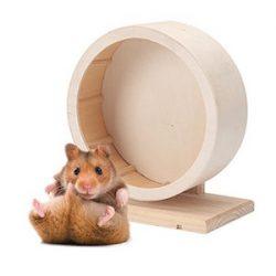 Petacc Pet Rueda para ejercicios de madera Mute , Apta para Hamsters,, 5.9 '' Diámetro (M)