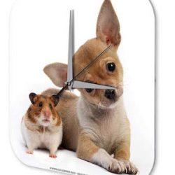Reloj De Pared Cocina Marke Chihuahua cachorro Hamster Plexiglas Imprimido 25x25 cm