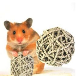 Sue Supply Pelota de paja natural – perfecto y seguro juguete masticable para conejos, gatos, hámsters, gerbos y pájaros: saludable para las encías y dientes de tu mascota