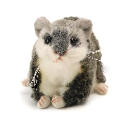 hamster ruso precio